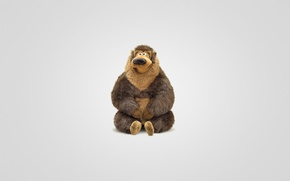 Picture animal, toy, bear, sitting, light background, bear