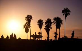 Picture summer, california, sunset, usa, surf, los angeles, palm, vence beach