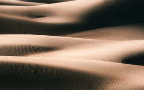 Picture sand, the dunes, Bodies