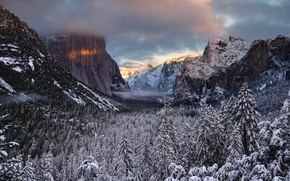 Picture winter, forest, clouds, snow, rocks, spruce, valley, coniferous