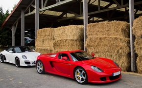 Picture 911, Porsche, Red, Carrera, White, Supercars, Speedster