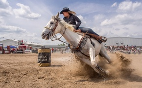 Picture girl, horse, sport