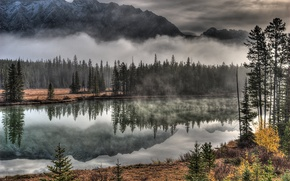 Picture the sky, trees, mountains, clouds, fog, river
