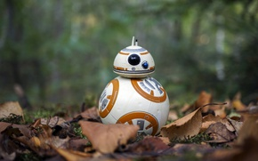 Wallpaper autumn, Star Wars, BB-8