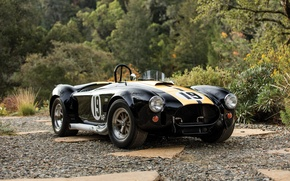 Picture Ford, Shelby, Cobra, Ford, Shelby, 1965, Cobra 427