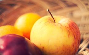 Picture basket, apples, fruit, razmytost