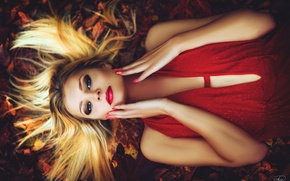 Picture dress, autumn, in red, girl, on earth, hairstyle, makeup, leaves, face, blonde, lies, hands, look