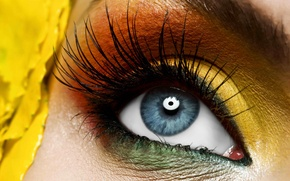 Picture yellow, eye, makeup