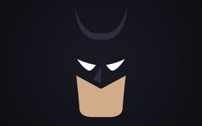 Picture batman, face, costume
