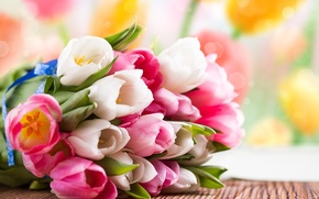 Picture flowers, tulips, bouquet, spring, pink, white