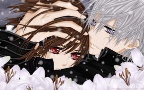 Picture look, snow, flowers, tears, hugs, Vampire Knight, Yuki, Zero