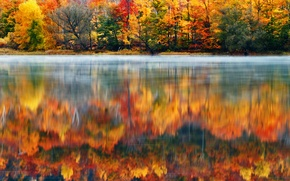 Picture forest, nature, lake, paint, morning, USA, New England, New Hampshire, Klaus Brandstaetter Photography