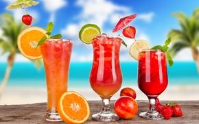 Picture lemon, ice, cocktails, citrus, berries, cocktails, fruit, orange, glasses, summer, umbrellas, lime, strawberry