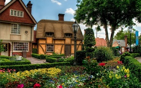 Wallpaper flowerbed, trees, town, flowers, houses