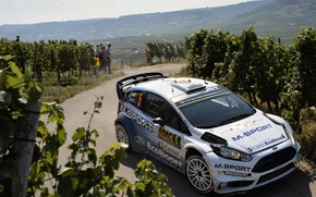 Picture Ford, Ford, Germany, WRC, Fiesta, Elfyn Evans, The vineyards