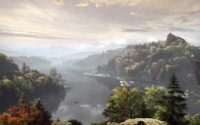 Picture forest, nature, fog, stream, shore