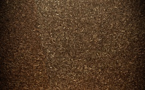 Picture surface, curls, Texture, Golden tone