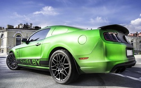 Picture Mustang, Ford, Shelby, Ford, Mustang, Green, 302, Boss