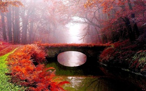 Picture autumn, bridge, fog, Park, river