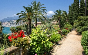 Picture sea, beach, the sun, trees, flowers, mountains, the city, palm trees, coast, France, view, home, …