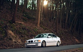 Picture road, forest, trees, BMW, BMW, white, The 3 series, e46, 323i