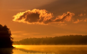 Picture water, light, trees, fog, lake, river, landscapes
