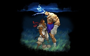 Picture Street Fighter, Ryu, Sagat