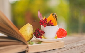 Picture autumn, leaves, berries, Cup, red, book, pear, leaves, saucer