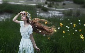 Wallpaper field, girl, summer