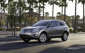 Wallpaper palm trees, exotic, Nissan-Rogue-2011