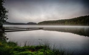 Picture forest, fog, river, morning, pier, haze