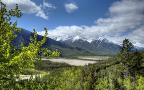 Picture forest, Canada, Albert, Banff National Park, Alberta, Canada, Rocky mountains, Banff, Rocky Mountains
