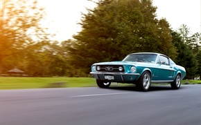 Picture Mustang, Ford, Ford, 1967