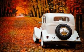 Picture autumn, Park, background, Wallpaper, Gas, emka
