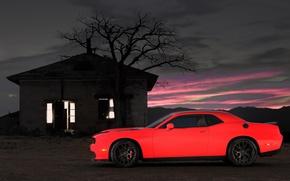 Picture Dodge, Challenger, picture, Hellcat, SRT