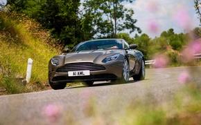 Wallpaper road, Aston Martin, car, the front, Aston Martin, DB11