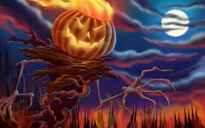 Wallpaper pumpkin, Halloween, night