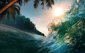Wallpaper beach, water, squirt, palm trees, the ocean, wave