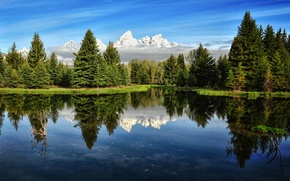 Picture forest, the sky, mountains, river, morning, USA