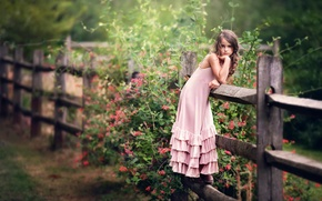 Picture flowers, the fence, dress, girl, child