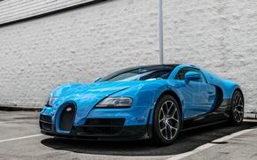Picture Bugatti, Veyron, Vitesse