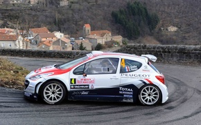 Picture Peugeot, Peugeot, Blur, S2000, Rally, Rally, Monte Carlo, Blur, 207, Bryan Bouffier