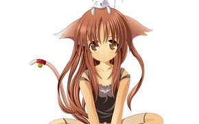 Picture girl, tail, kitty, I love it, bell, A School Life of Heaven
