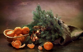 Picture branches, spruce, bells, tangerines
