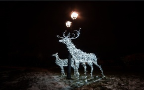 Picture holiday, lights, garland, deer