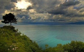 Picture clouds, tree, coast, Italy, Italy, The Bay of Naples, The gulf of Naples