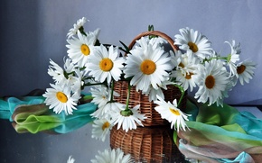 Picture flower, flowers, basket, chamomile, bouquet, basket, field, beautiful
