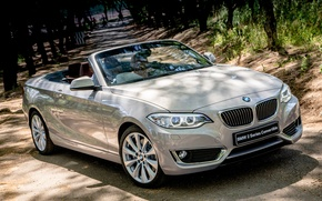 Picture BMW, BMW, convertible, Cabrio, Luxury, 2015, F23, ZA-spec, 228i