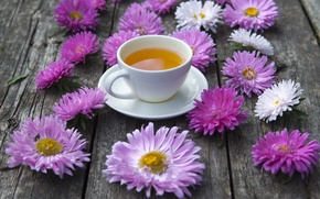 Picture tea, Cup, asters