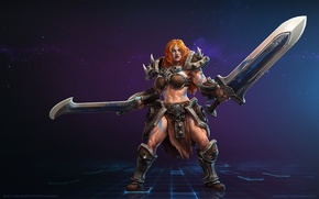 Picture blizzard, swords, diablo 3, barbarian, heroes of the storm